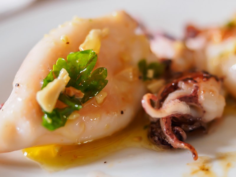 Baby squid and its parts with spanish sauce