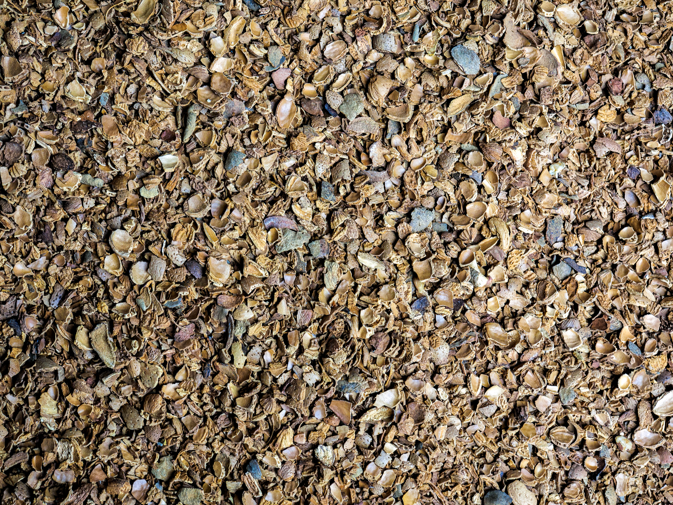 Crushed almond shells used in biomass boilers