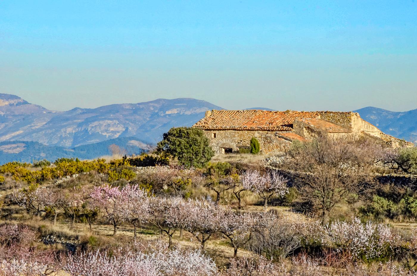 My dream masia in Spain?