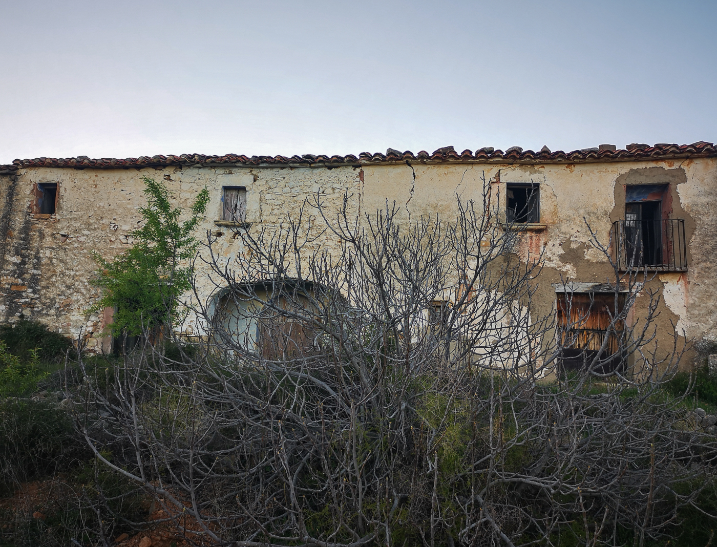 Thee masia was being reclaimed by nature